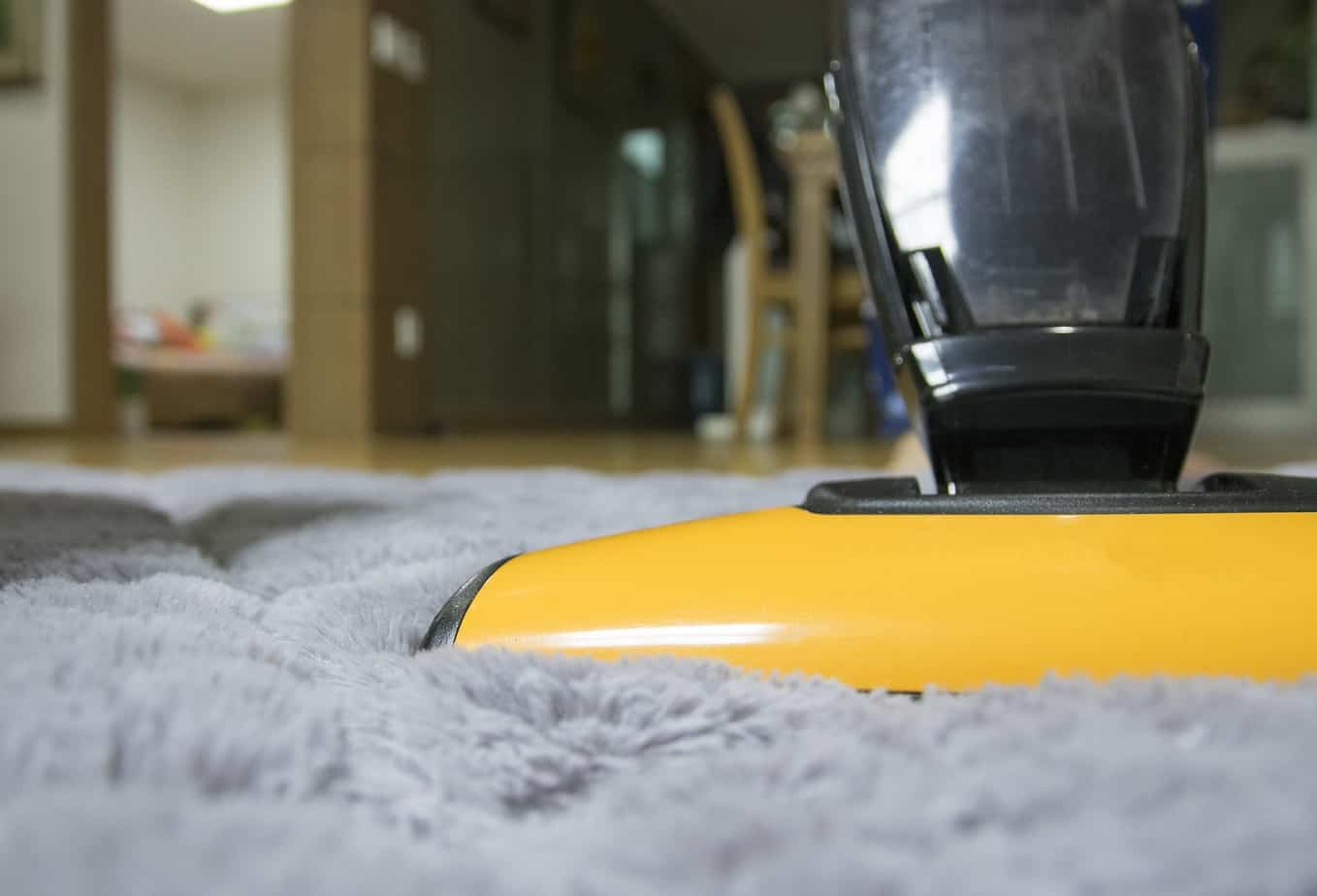 vacuum steam clean carpet