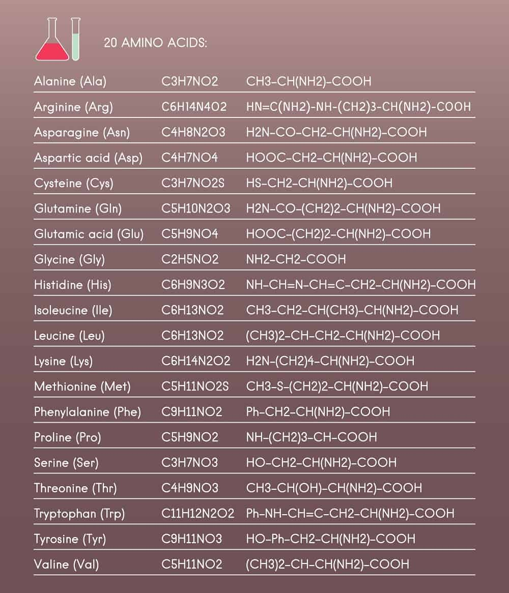 twenty amino acids