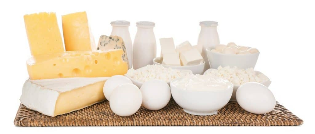 dairy protein sources